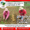 Colabore com a luta e organização do Movimento dos Pequenos Agricultores-MPA