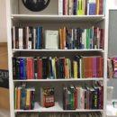 NPC homenageia Carolina Maria de Jesus ao inaugurar sua Biblioteca Popular